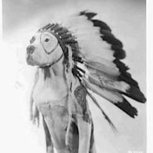 Apache Lifeforms's avatar