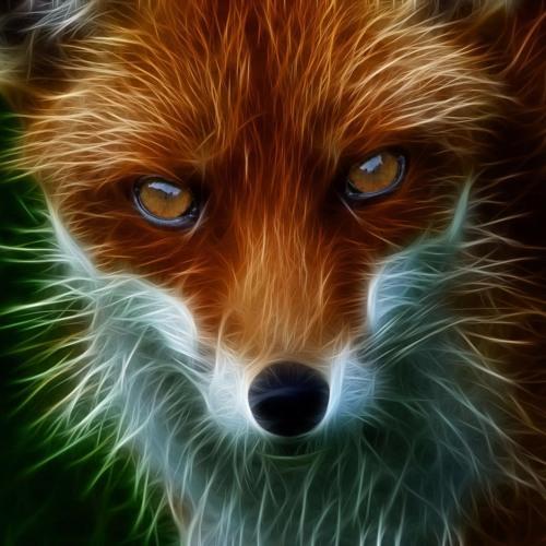 bin4rym4ge's avatar