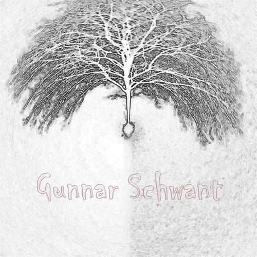 Gunnar Schwant's avatar