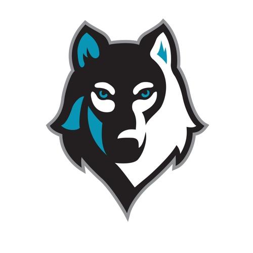 Wolfenstein's avatar