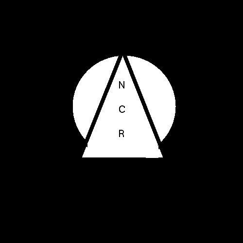 NoCopyright Records ✪'s avatar