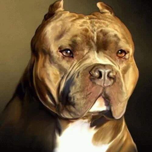 Rikie Garcia's avatar