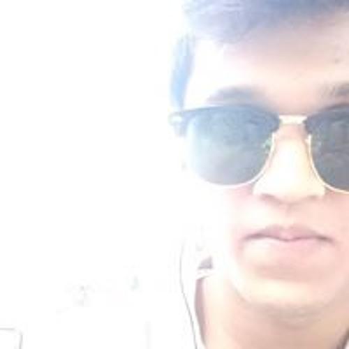 Prajay Meshram's avatar