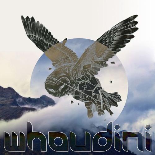 Whoudini ®'s avatar