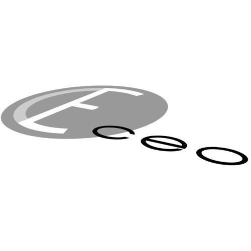 CEO's avatar