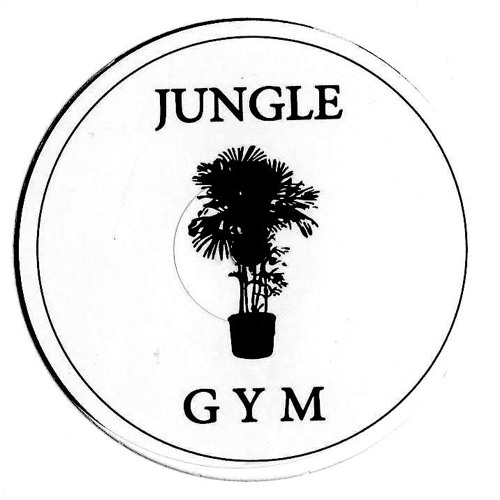 JUNGLE GYM RECORDS's avatar