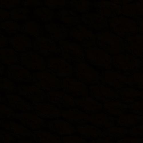 Warptone's avatar