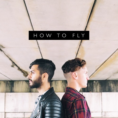 How To Fly's avatar