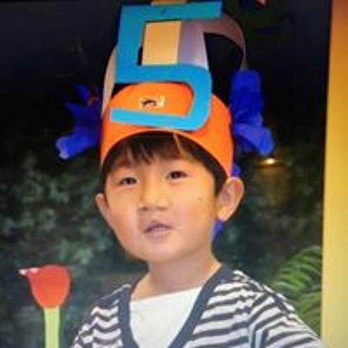 Sheng van Rumste's avatar
