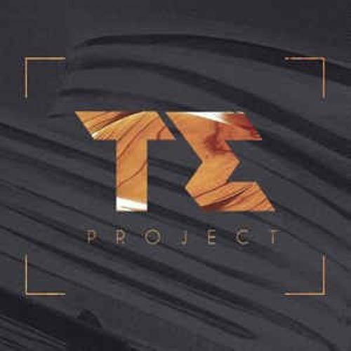 T.E PROJECT's avatar