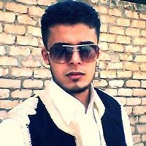 Hasan ALnaffaty's avatar