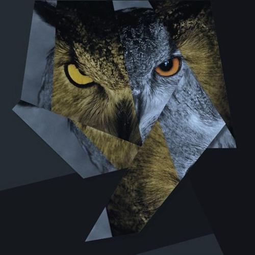 LowOwl's avatar
