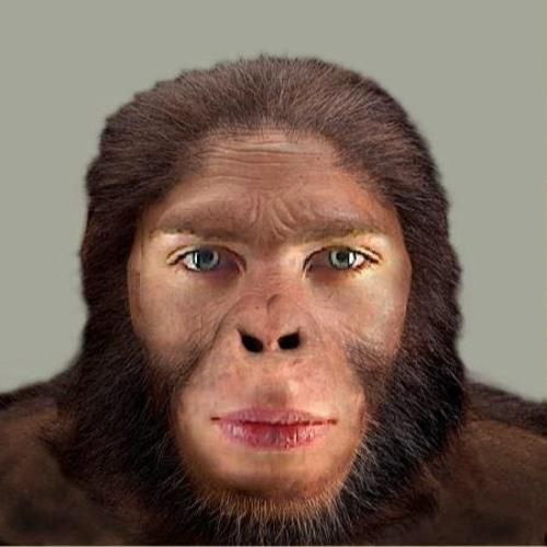 Joe Ireland's avatar