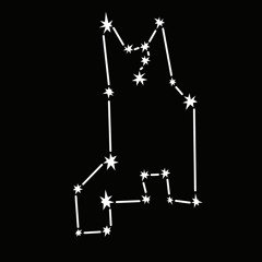 constellationtatsu
