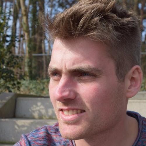 Benjamin de Bruijn's avatar