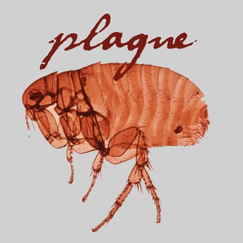 Plague's avatar