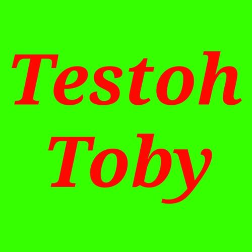 Testoh Toby's avatar