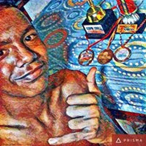 Luis Cotes's avatar