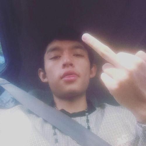 Francisco Ibarra 24's avatar