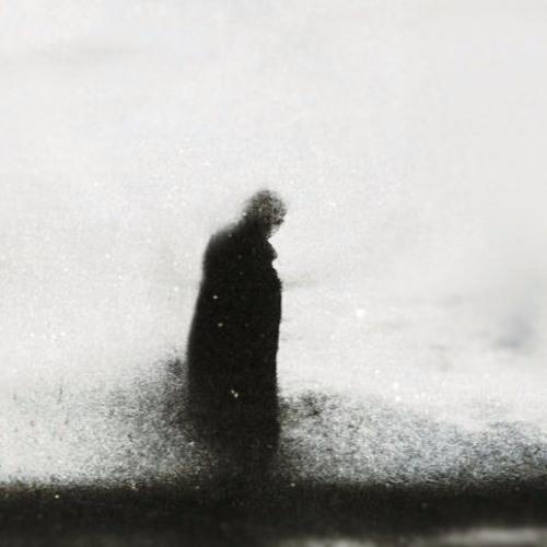 midder's avatar