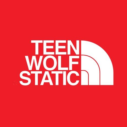 Teenwolf and Static's avatar
