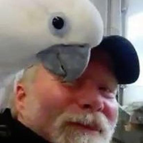 Bird Talk Radio's avatar