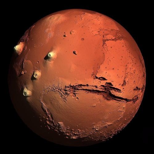 Dj Mars's avatar