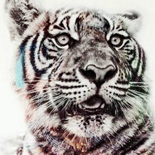 BROOKSY_II's avatar