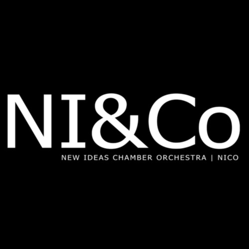 New Ideas Chamber Orchestra's avatar