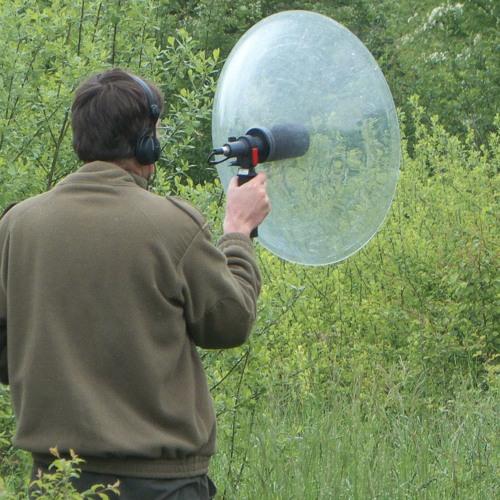 promeneurs ecoutant's avatar