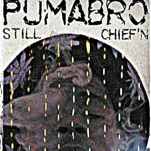 PUMABRO STILCHIEFN (SIENDO EL JEFE)'s avatar