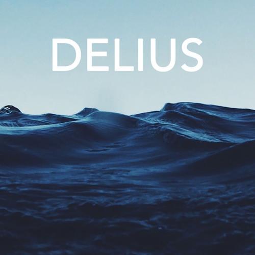 DELIUS's avatar