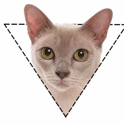 sisu's avatar