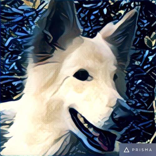 2drewlee's avatar