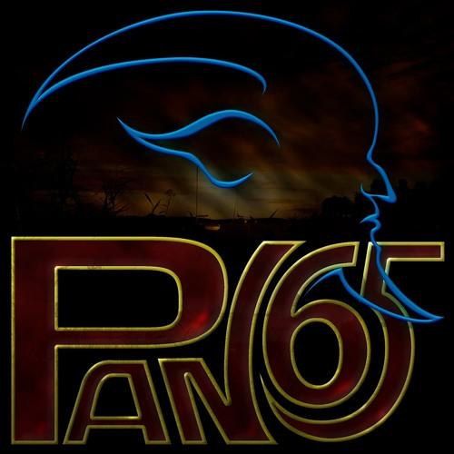 Pan65's avatar