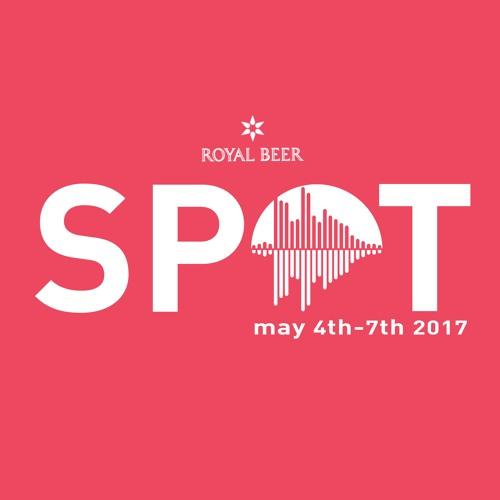 SPOT Festival's avatar