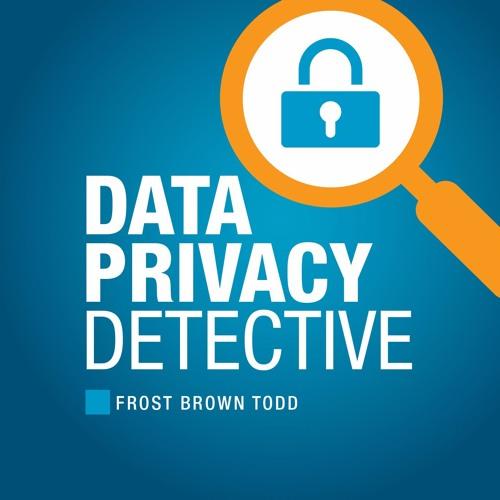 Data Privacy Detective Podcast's avatar