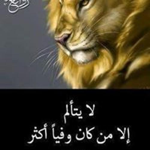 Hanaa Aboelsoud's avatar