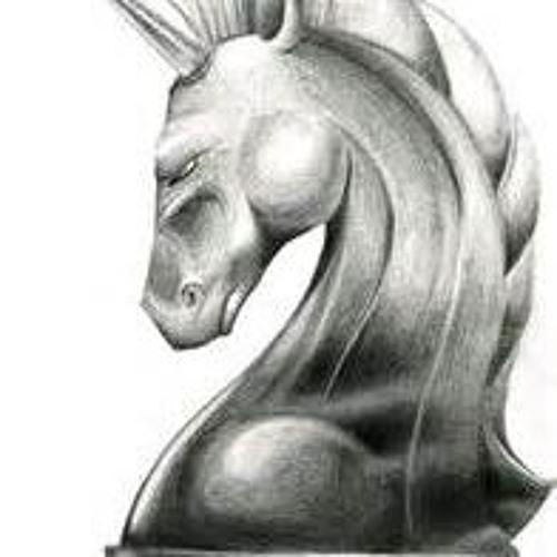 Il Paladino's avatar