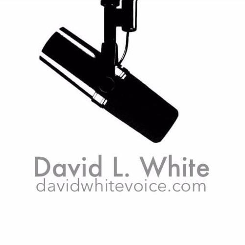 David L. White - Voice Talent's avatar