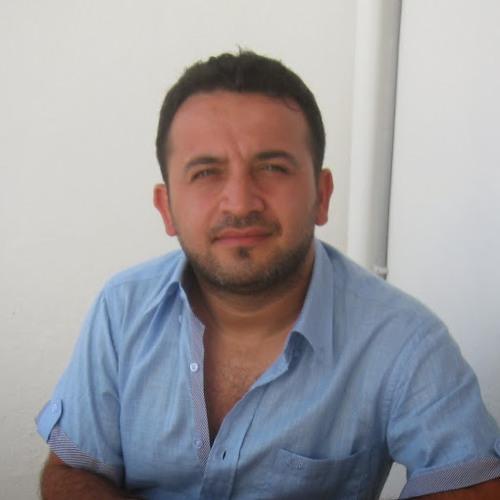 feritergin's avatar
