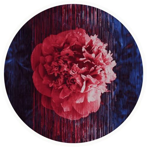 rainflower's avatar