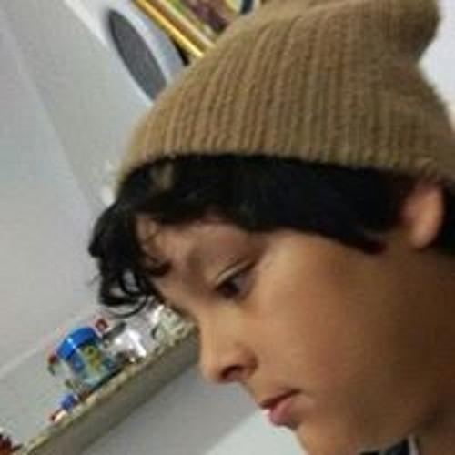 Vinicius Pereira Regoli's avatar