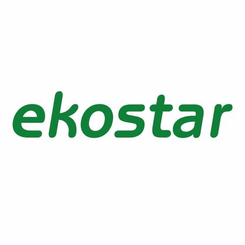 ekostar's avatar