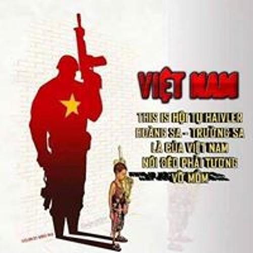 Nguyễn Việt Cường's avatar