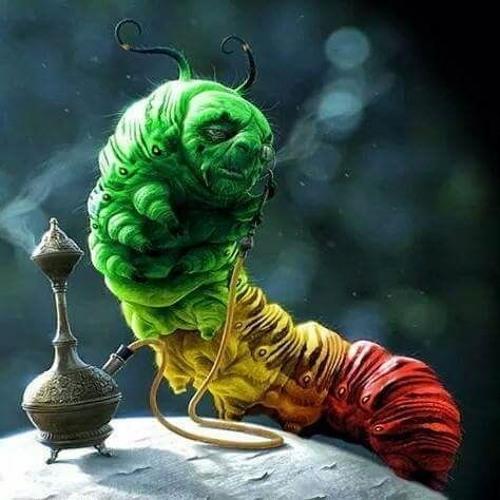 Weird sick and Twisted brain's avatar