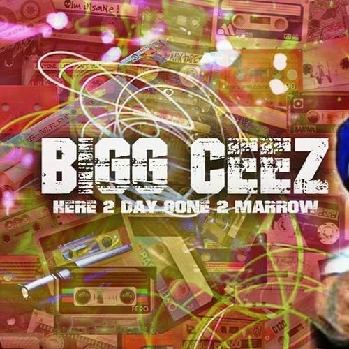 Bigg ceez's avatar
