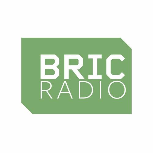 BRIC RADIO's avatar