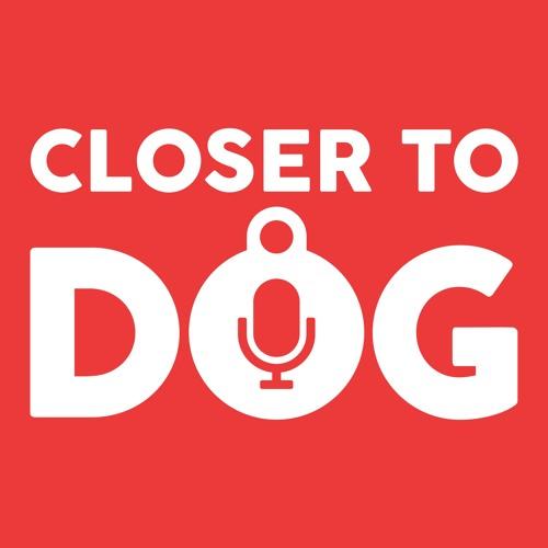 CloserToDog's avatar