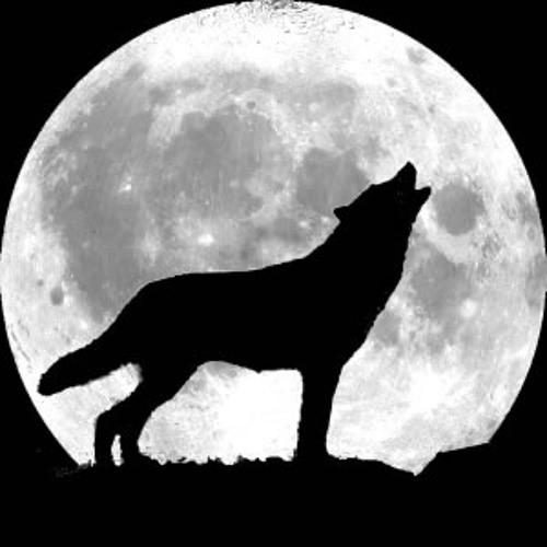 Midnight Oil Studios's avatar